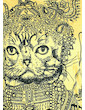 SURE Women´s T-Shirt - Kirshna Cat